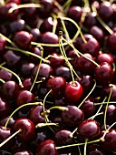 Sweet cherries (macro-zoom)
