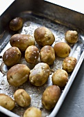 Jacket potatoes with salt