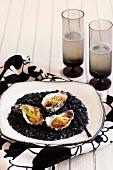 Baked oysters on black salt