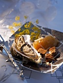 Oysters with broth and croutons