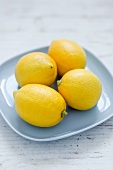 Four lemons on a light blue plate