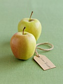 Two Golden Delicious apples with a label