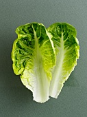 Two lettuce leaves