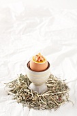 Soft boiled egg with North Sea shrimp