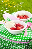 Strawberry compote with vanilla ice cream on a cooler bag