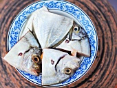 Raw fish heads (Thai butter fish) on a plate