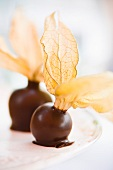 Chocolate-dipped physalis