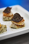 Baked Jacobs mussels with truffle slices