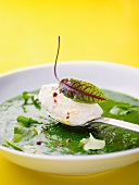 Herb soup with goat cheese dumplings