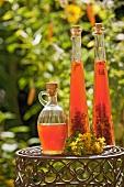 St. John's Wort oil in bottles