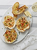 Gratinated prawns in scallop shells