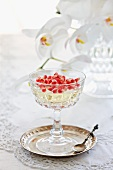 Champagne jelly with pomegranate seeds