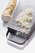 Horseradish, whole and grated with a grater