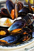 Mussels in saffron broth