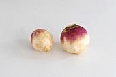 Two white turnips