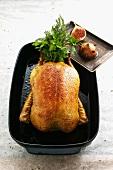 Roast duck with chestnut honey figs