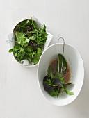 Blattsalat marinieren