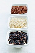 Three different types of rice