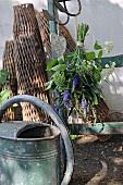 Giesskanne vor Holzleiter mit aufghängtem Blumenstrauss