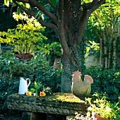 Rosen neben Vintage Kanne und Hahnfigur aus Terrakotta auf bemooster Steinbank in der Abendsonne