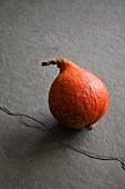 A Hokkaido squash