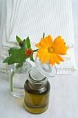 Ringelblumenblüte und Öl in Glasflaschen