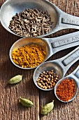 A Set of Measuring Spoons with Cumin, Turmeric, Mustard Seed, Chili Powder and Cardamom