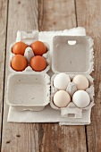Half Dozen White Eggs in Carton, Brown Eggs in Carton