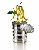 Beans hanging over a tin