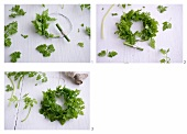 A wreath of chervil being tied