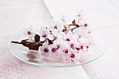 Cherry blossoms on a glass plate