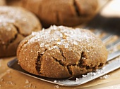 Close Up of a Molasses Cookie Sprinkled with Sugar on a Spatula