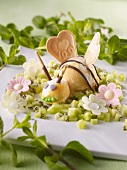 Bee-shaped mango sorbet and edible paper flowers on kiwi salad
