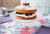 Sponge cake with berries, cream and icing sugar