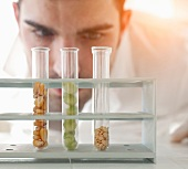 A scientist checking seeds in test tubes