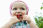 Little girl stuffing red currants in mouth