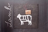 A sketch of a lamb and an English label on a chalkboard