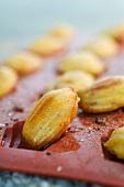 Chorizo Madeleines