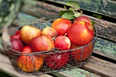 Fresh apples in a wire basket on a wooden bench