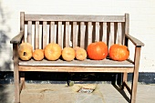 Various pumpkins on a wooden bench in the open air