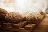 Mehrere Brote auf Holzgitter