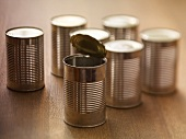 Tin cans, one opened