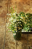 Fresh Picked Organic Chamomile in a Jar on a Table