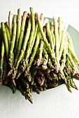 Fresh Asparagus Spears on a Plate