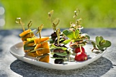 Vegetable kebabs with sardines and stone crop
