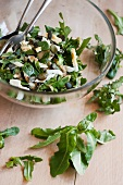 Ferkelkraut-Salat mit Kürbiskernöl