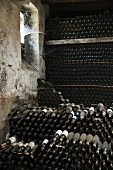 Bottles maturing in the cellar of Fattoria Selvapiana