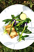 Pokeweed asparagus with marinated tofu