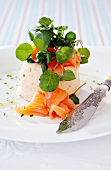 Salmon mousse with watercress