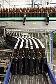 Filled beer bottles on a conveyor belt in the A. Le Coq brewery in Estonia
